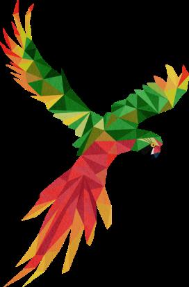 animal-perroquet-ara-vert-rouge