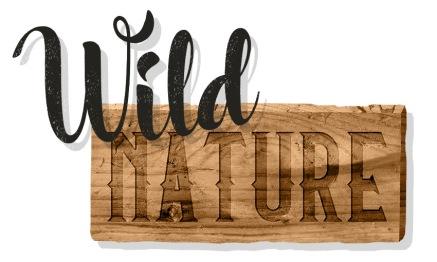 wild-north-
